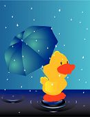 Duck waddling in the rain with umbrella