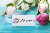 stock photo of wishing-well  - Tag with Welcome on turquoise Board with Tulip Flower - JPG