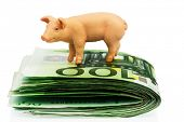 a pig standing on euro banknotes money. rising feed costs in agriculture. falling income for pork