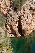 Doghouse Rock