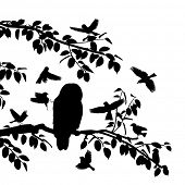 Silhouettes of songbirds mobbing an owl on a branch