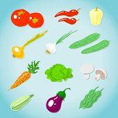 Set Of Various Vegetables