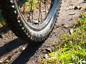 Mountain Bike Wheel Detail
