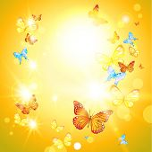 Positive summer card with sunshine and butterflies. Raster version