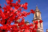 foto of bolivar  - Cathedral of Bogota - JPG