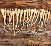 Bunch Of Parsnip