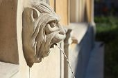 image of gargoyles  - Gargoyle with drinking water in the city - JPG