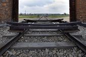 Train Railroad At Auschwitz Birkenau,poland.