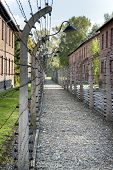 Corridor Of Electrified Barbed-wire Fences In Auschwitz Ii-birkenau Extermination Camp