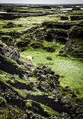 Myvatn Landscape