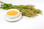 Cup with sorrel tea