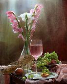 foto of gladiolus  - Still - JPG