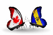 Two Butterflies With Flags On Wings As Symbol Of Relations Canada And Barbados