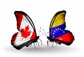 Two Butterflies With Flags On Wings As Symbol Of Relations Canada And Venezuela