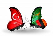 Two Butterflies With Flags On Wings As Symbol Of Relations Turkey And Zambia