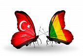 Two Butterflies With Flags On Wings As Symbol Of Relations Turkey And  Mali