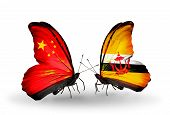 Two Butterflies With Flags On Wings As Symbol Of Relations China And Brunei