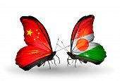 Two Butterflies With Flags On Wings As Symbol Of Relations China And Niger