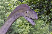 Realistic Model Of Dinosaur's Head