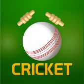Cricket sports concept with ball and bails on shiny green background.