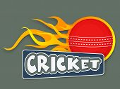 image of cricket ball  - Red cricket ball in flame with text cricket - JPG