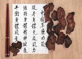 Cibota tuber chinese herbal medicine with calligraphy script. Translation describes chinese herbal medicine as increasing the bodys ability to maintain body and spirit health and balance energy.