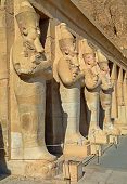 pic of hatshepsut  - Statue of the Queen Hatshepsut in temple  - JPG