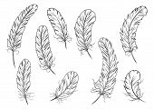 Outline Bird Feather Icons