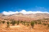 image of atlas  - Landscape of Morocco at summer - JPG