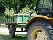 Yellow tractor with green trailer