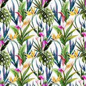 pic of jungle flowers  - Beautiful vector seamless pattern with nice tropical watercolor flowers - JPG