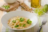 pic of chickpea  - Chickpeas with paprika cream sauce sprinkled with herbs organic chickpeas - JPG