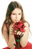 Beautiful Child Girl With Red Rose.