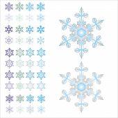 Snowflakes.