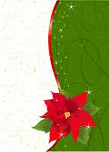 Red Poinsettia Vertical Christmas Place Card