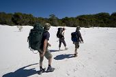 stock photo of mckenzie  - three hikers walking on a beach in australia on fraser island on a clear sunny day 1 - JPG