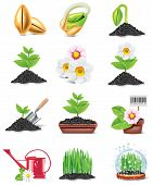 Jardinagem icon set vector
