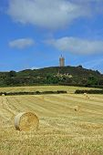 Below Scrabo Tower