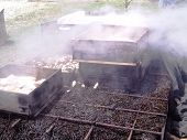 Steaming Clambake