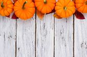 Autumn Leaves And Pumpkin Top Border Over A Rustic White Wood Background poster