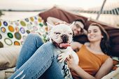 Cute Dog Smiling While On A Trip With His Owners, Joyful Young Family, Woman Petting Dog While Lying poster