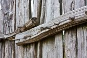 Old Fence with Wooden Nails
