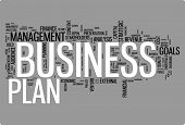 Business plan word cloud illustration. Graphic tag collection