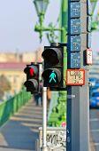 Pedestrian Lamp In The City