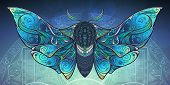 Abstract Mystical Moth In Psychedelic Design. Vector Illustration. poster