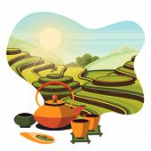 China Tea Green Terrace Fields Plantation. Japanese Tea Ceremony, Vector Cartoon Illustration. Teapo poster