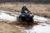 picture of four-wheeler  - male riding a quad - JPG