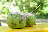 stock photo of brazil nut  - Coconut - Tropical green coconuts opened for the drinking water with straws.