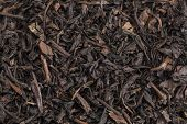 textura de fundo do chá a granel orgânico Se Chung Oolong