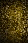 Snake Skin Gold